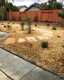 back yard transformation