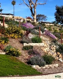 sloped hillside transformation