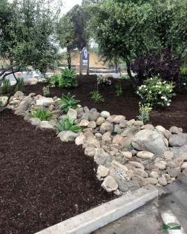 commercial property | dry creek bed | water-wise design