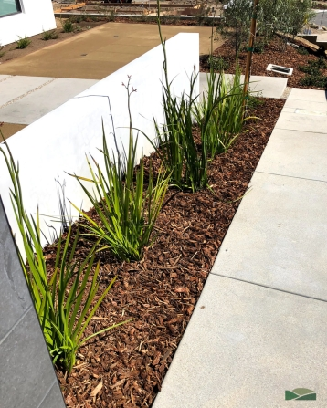 new home front yard installation | low maintenance