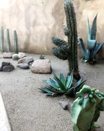 courtyard landscape | decomposed granite | cactus